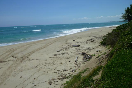 #0 Beachfront Property Cabarete Kitebeach