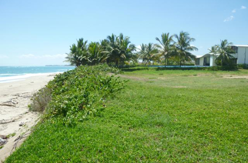 #3 Beachfront Property Cabarete Kitebeach
