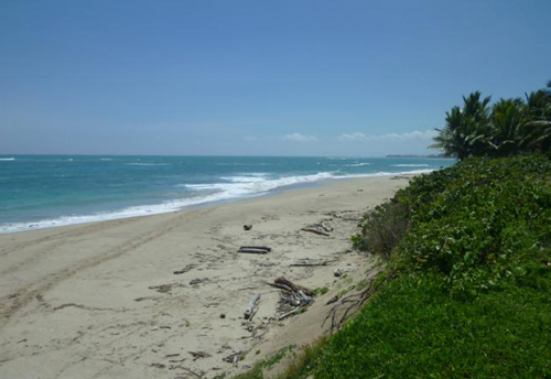 #4 Beachfront Property Cabarete Kitebeach