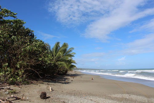 #12 Stunning Beachfront Land With Wide Frontage